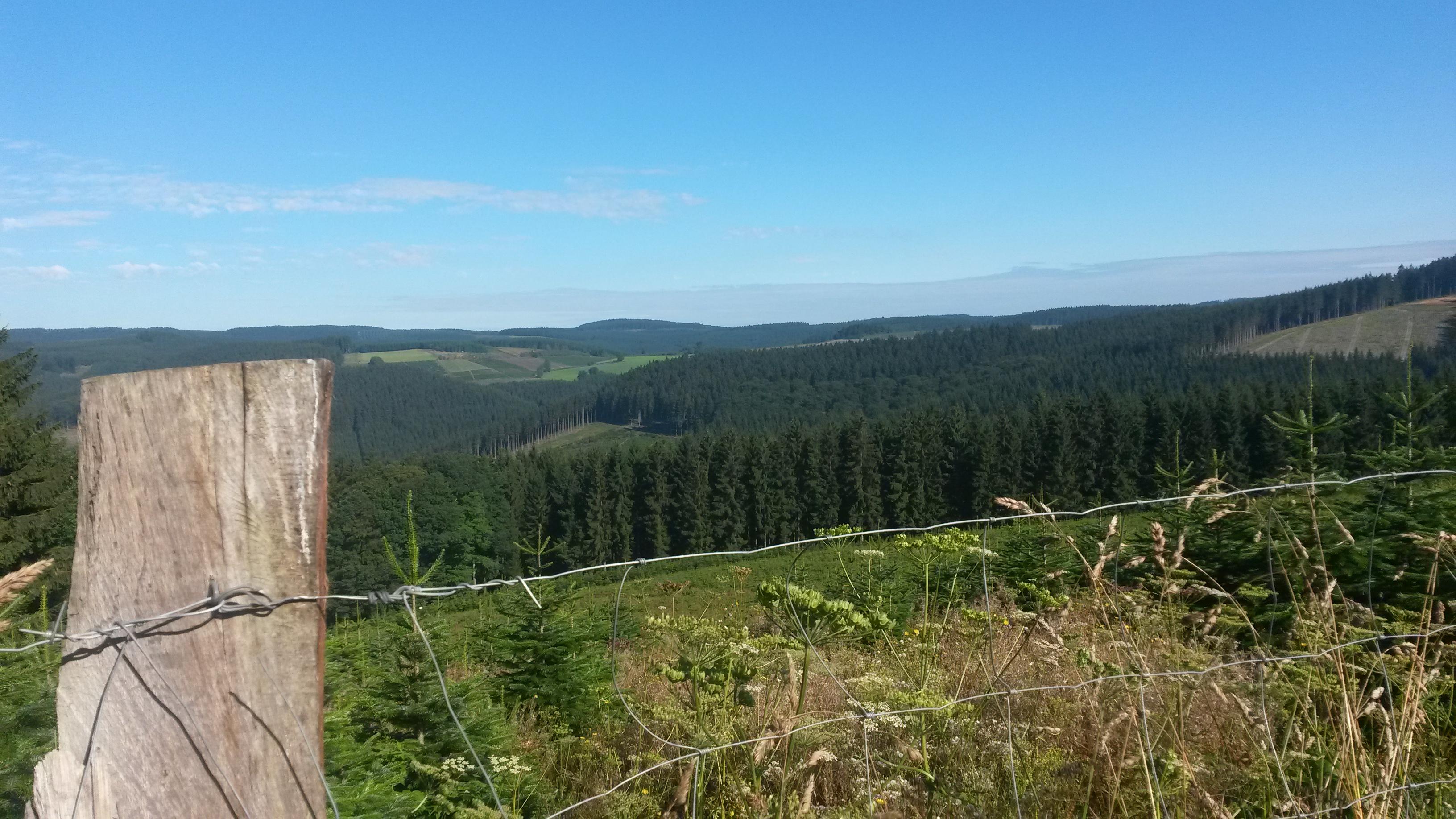 Blick vom Hesenberg