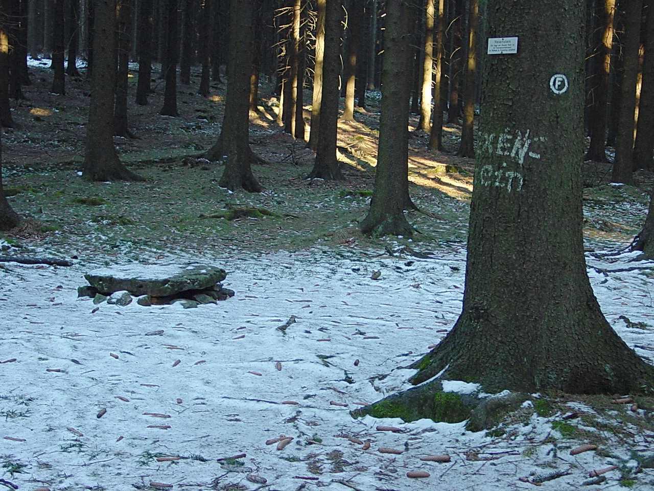 Hexenstein 2006 (vor Kyrill), Fotograph: Eckard Sieg